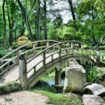 Piękny oraz estetyczny ogród to zasługa wielu godzin spędzonych  w jego zaciszu w toku pielegnacji.